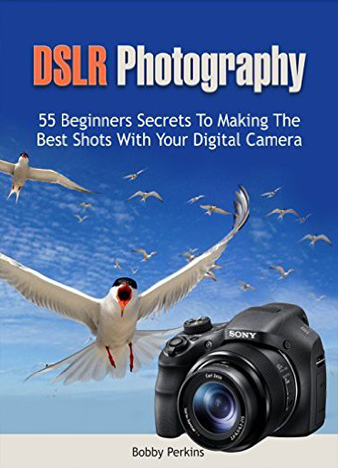 DSLR Photography - Bobby Perkins