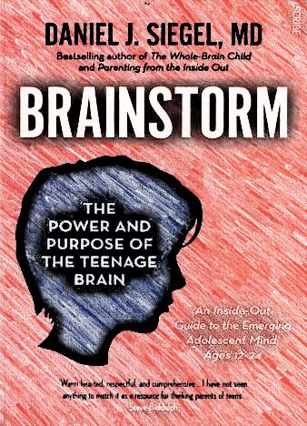 brainstorm-daniel