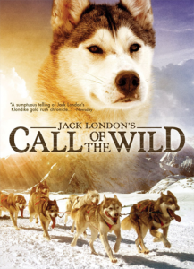 The-Call-of-the-Wild-jack-london
