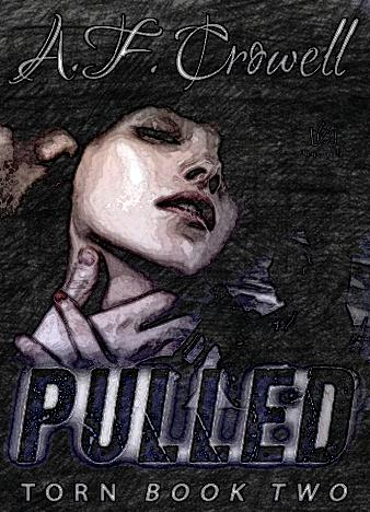 Pulled-Torn-Book-2