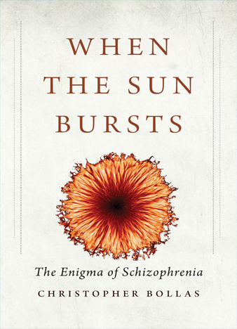 When the Sun Bursts The Enigma of Schizophrenia