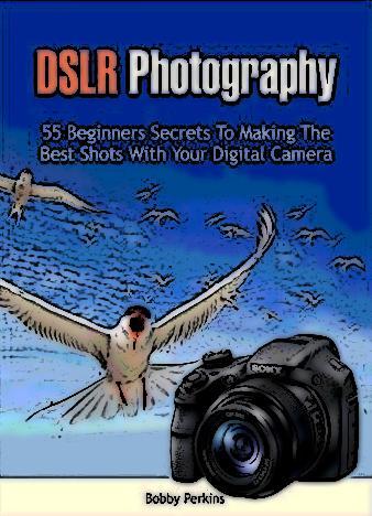 DSLR-Photography-Bobby-Perkins