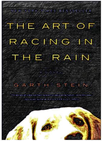 The-Art-of-Racing-in-the-Rain2