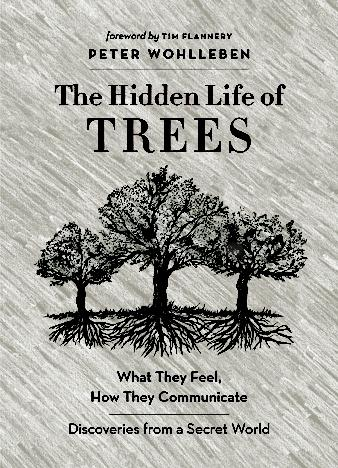 the-hidden-life-of-trees-by-peter-wohlleben