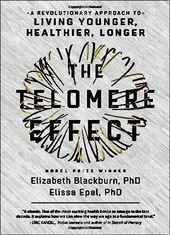 The-Telomere-Effect-By-Dr.-Elizabeth-Blackburn