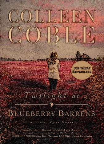Twilight-At-Blueberry-Barrens-By-Colleen-Coble